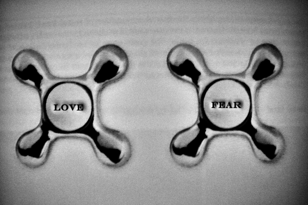 Image result for love fear